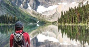 Basic Hiking Tips For Beginners