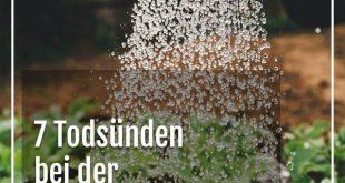 7 Todsünden bei der Gartenarbeit - die man unbedingt vermeiden sollte