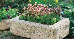 Pflanzgefäße aus Beton selber machen