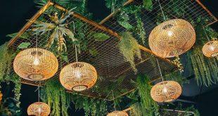 14+ Spectacular Banana Plants Outdoor Ideas