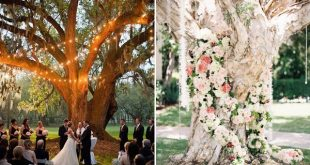 30 Creative Ideas to Decorate Your Outdoor Wedding Ceremony