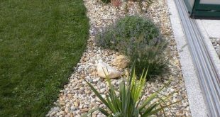 49 Superb Backyard Rock Garden Ideas To Try Nowaday