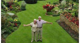 58 großartige Ideen für Pflanzgefäße zur Aufwertung Ihres Außenbereichs 35 - Patricia Clowers
