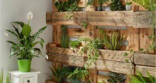 Agave im Betontopf - für ein natürliches Ambiente zum Wohlfühlen