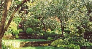 Perfekt für einen Garten mit leichtem Gefälle, wenn Sie noch ebene Flächen und Rasen haben möchten