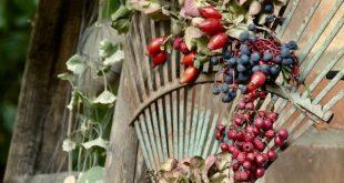 Rostiger Rechen wird Herbstdeko