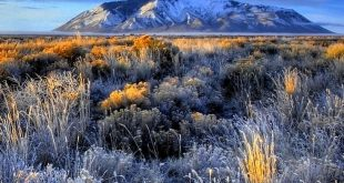 Travel | Idaho | Attractions | USA | Places To Visit | Bucket List | Things To D...