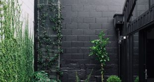 #outdoor #garden